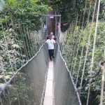 Suspension bridge at poring hot spring