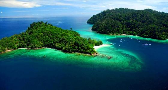 Borneo Nature