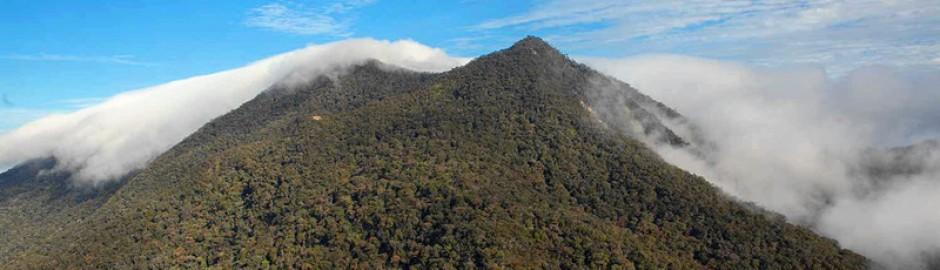Mount Trus Madi 特鲁斯马迪山