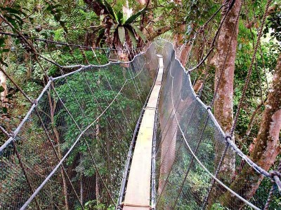 borneo-tours-package